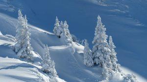 Read more about the article Der nächste Winter kommt bestimmt