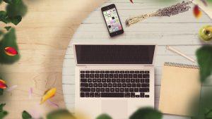 Read more about the article Der Webmaster und das geheime Leben der Pflanzen